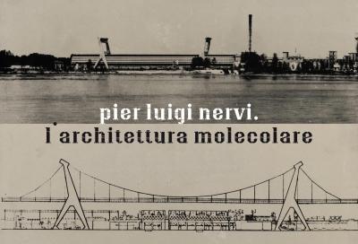 Nervi_architettura_molecolare